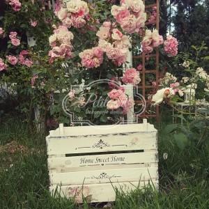 111 Róże Duża Skrzynia na Kwiaty ecru